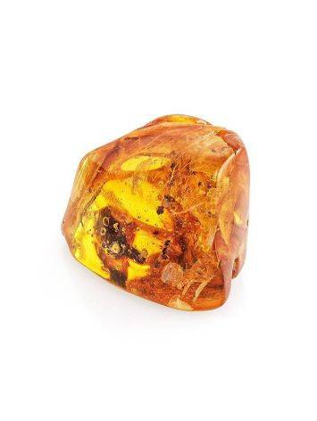 Natural Textured Amber Stone With Ant Inclusion, image