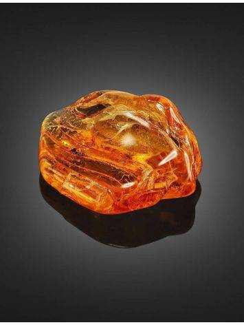 Souvenir Amber Stone With Fly Inclusions, image , picture 3