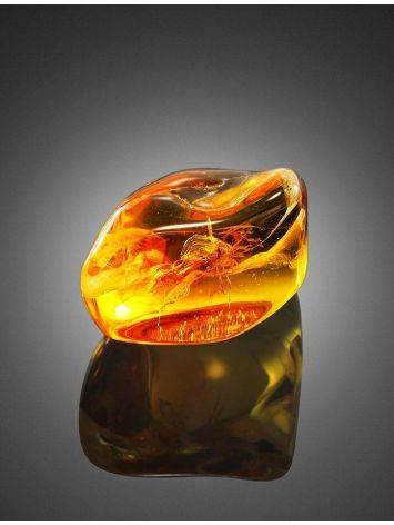 Glossy Amber Stone With Spider Inclusion, image , picture 3