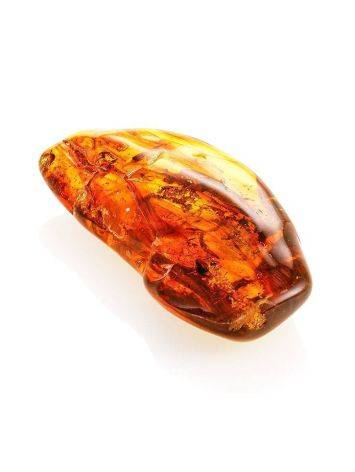 Amber Stone With Fly Inclusion, image , picture 5