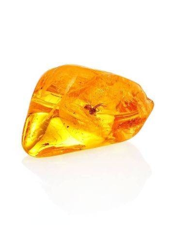 Luminous Amber Stone With Spider Inclusion, image , picture 5