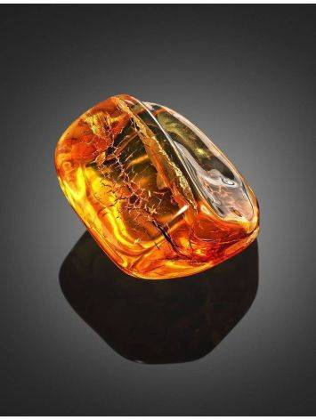Natural Amber Stone With Midge Inclusion, image , picture 4
