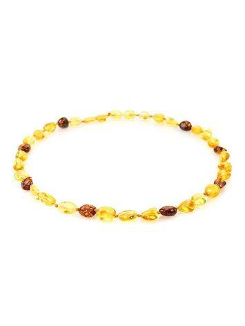 Multicolor Amber Teething Choker Necklace, image